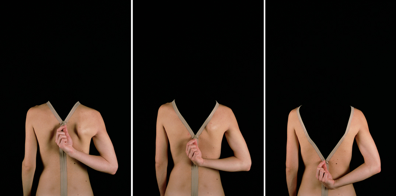 Asimilación, 2003. C-print