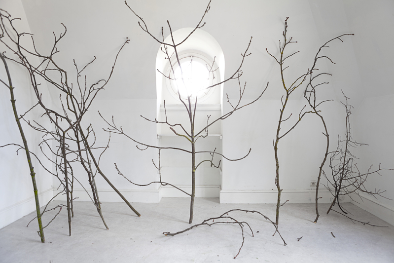 Atelier VI, 2013